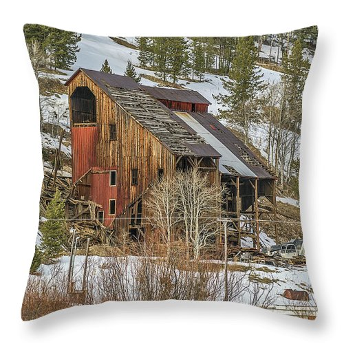 Usa Throw Pillow featuring the photograph Tall Old Building by Sue Smith