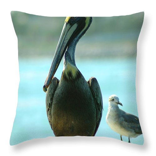 Pelican Throw Pillow featuring the photograph Tall Pelican by Susanne Van Hulst