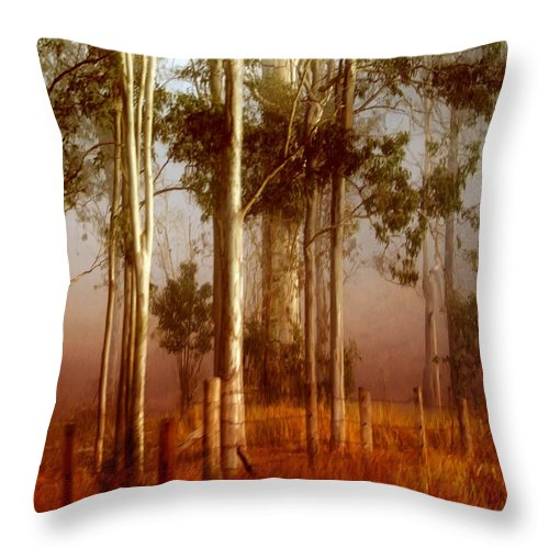 Landscape Throw Pillow featuring the photograph Tall Timbers by Holly Kempe