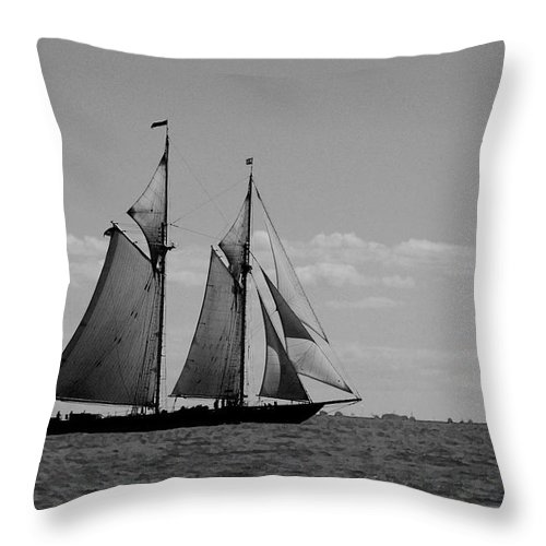 Pelican Throw Pillow featuring the photograph Tallship by Michael Thomas