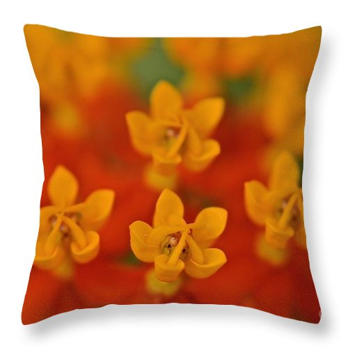 Tangerine Dreams And Marmalade Skies Throw Pillow For Sale