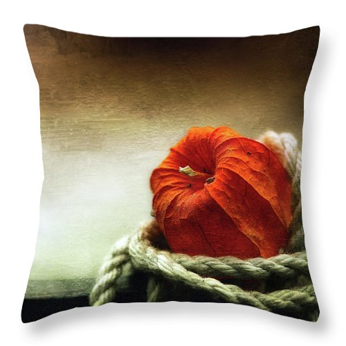 Art Throw Pillow featuring the photograph Tangled Season by Dragos Dumitrascu