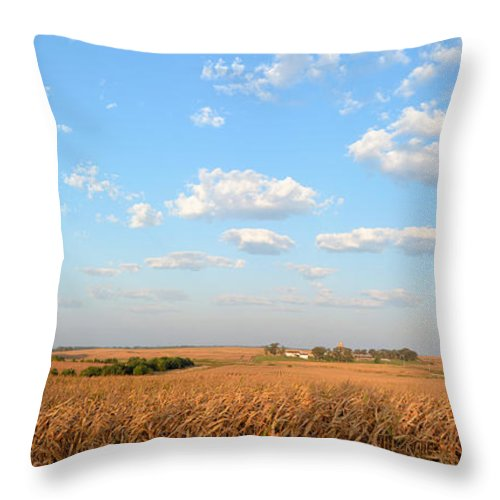Farm Throw Pillow featuring the photograph Tanner Farm 2 by Bonfire Photography