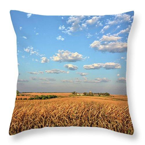 Farm Throw Pillow featuring the photograph Tanner Farm by Bonfire Photography