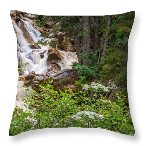 Trailsxposed Throw Pillow featuring the photograph Tanner Flat Falls by Gina Herbert