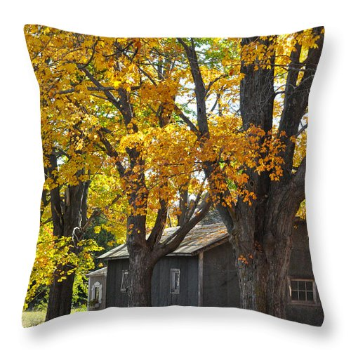 Autumn Throw Pillow featuring the photograph Tar Paper Shack by Tim Nyberg