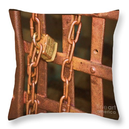 Metal Throw Pillow featuring the photograph Tarnished Image by Debbi Granruth