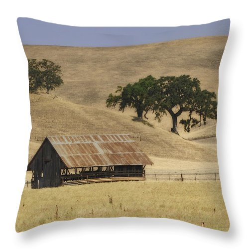 Landscapes Throw Pillow featuring the photograph Tassajara Road by Karen W Meyer