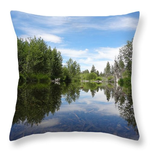 Landscape Throw Pillow featuring the photograph Taylor Creek Reflections by Kristina Lammers