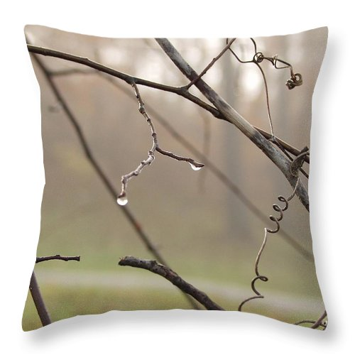 Landscape Throw Pillow featuring the photograph Teardrops by Carol Sweetwood