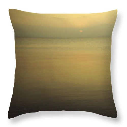 Blur Throw Pillow featuring the photograph Tell Me If You Know All This by Dana DiPasquale
