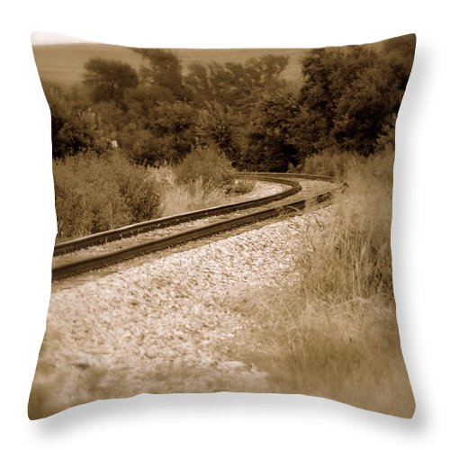Rail Throw Pillow featuring the photograph Temptress by Elizabeth Hart