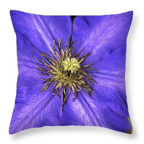 Clay Throw Pillow featuring the photograph Tenticles by Clayton Bruster