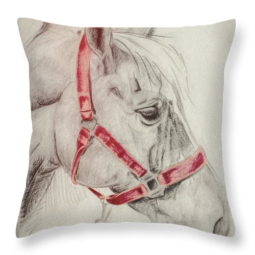 Horse Throw Pillow featuring the photograph Tequila Sketch by JAMART Photography