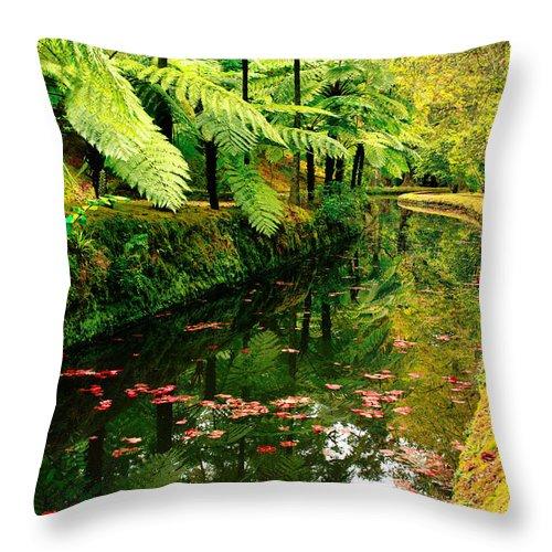 Azores Throw Pillow featuring the photograph Terra Nostra Park by Gaspar Avila