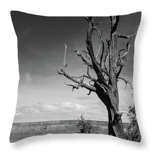 Grand Canyon Throw Pillow featuring the photograph Test Of Time by Martina Schneeberg-Chrisien