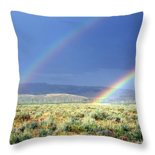 Grand Teton National Park Throw Pillow featuring the photograph Teton Rainbow by Marty Koch