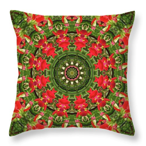 Texas Throw Pillow featuring the photograph Texas Paintbrush Kaleidoscope by Robyn Stacey