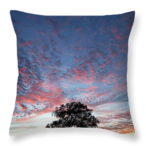 Tree Throw Pillow featuring the photograph Texas Sunset by Skip Hunt