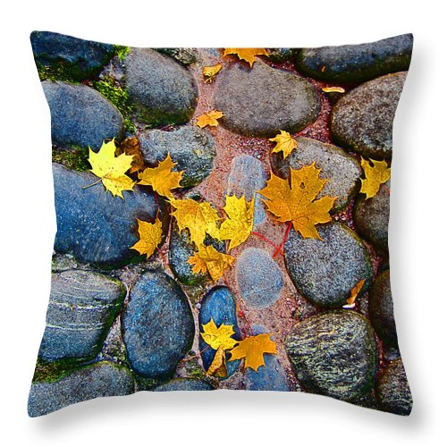 Texture Autumn Throw Pillow featuring the photograph Texture. Autumn. by Andy Za