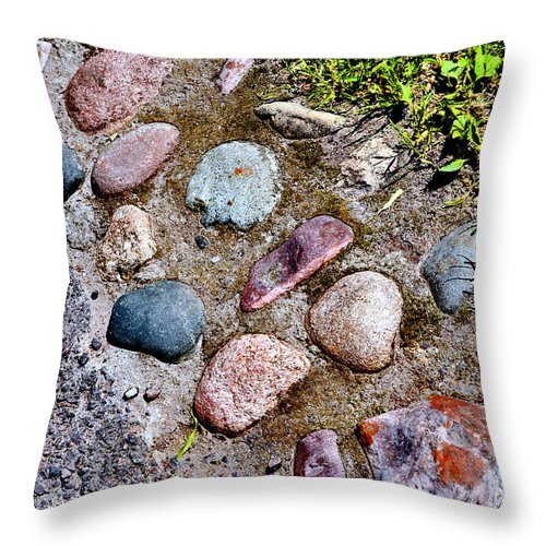 Mikhail Vrubel Throw Pillow featuring the photograph Texture. Terra. by Andy Za