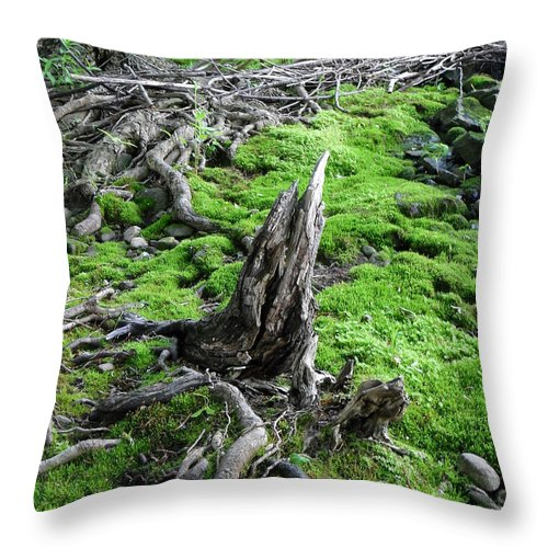 Nature Throw Pillow featuring the photograph Textured by Peggy King