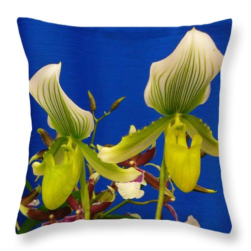 Orchids Throw Pillow featuring the photograph Thank You Thank You Very Much by Peggy King