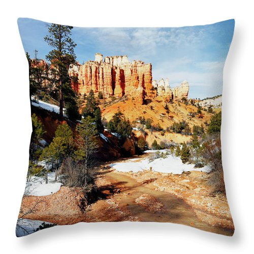 Thaw Throw Pillow featuring the photograph Thaw by Nicholas Blackwell