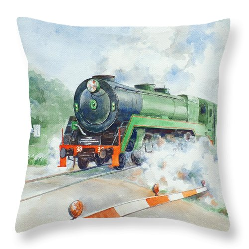 Watercolor Throw Pillow featuring the painting The 3830 At Robertson by Ekaterina Mortensen