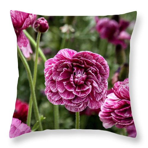 Flowers Throw Pillow featuring the photograph The Art Of Flowers by Mary Ourada