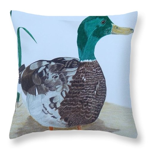 Mallard Throw Pillow featuring the painting The Bachelor by Anita Putman
