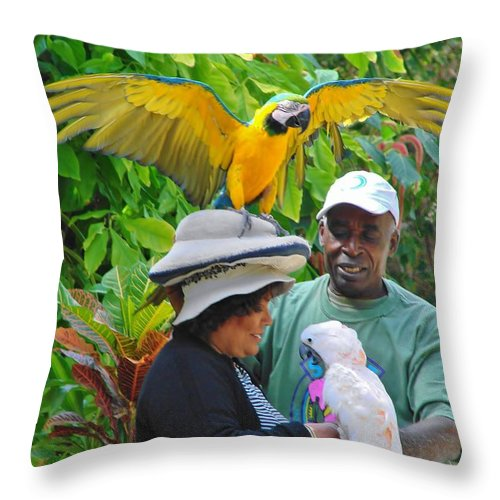 Ardastra Gardens Throw Pillow featuring the photograph The Bird Lady At Ardastra Gardens by Margaret Bobb