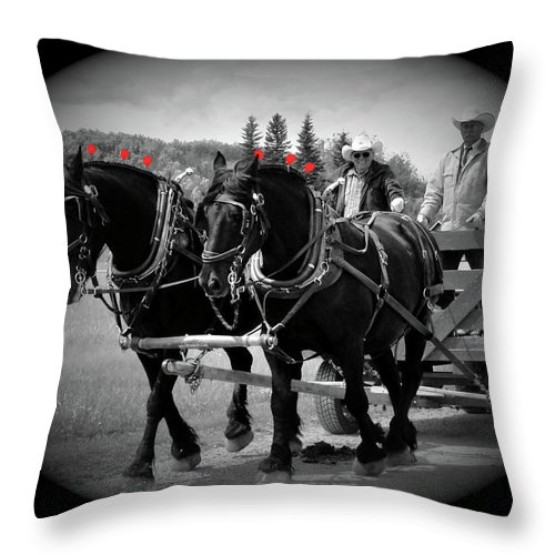 Al Bourassa Throw Pillow featuring the photograph The Black Team - Bar U Ranch by Al Bourassa