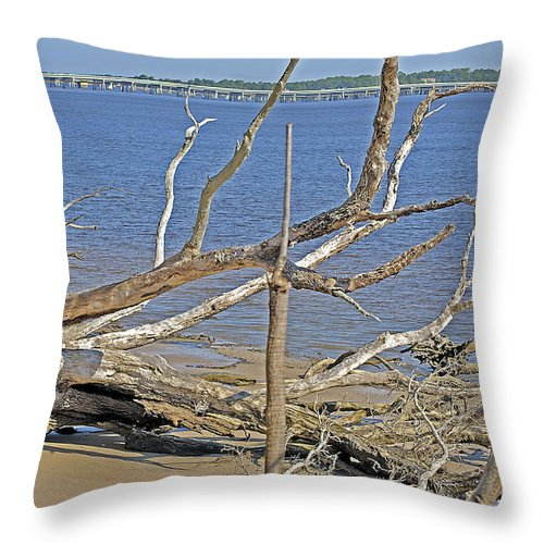Trees Throw Pillow featuring the photograph The Boneyard by Kenneth Albin