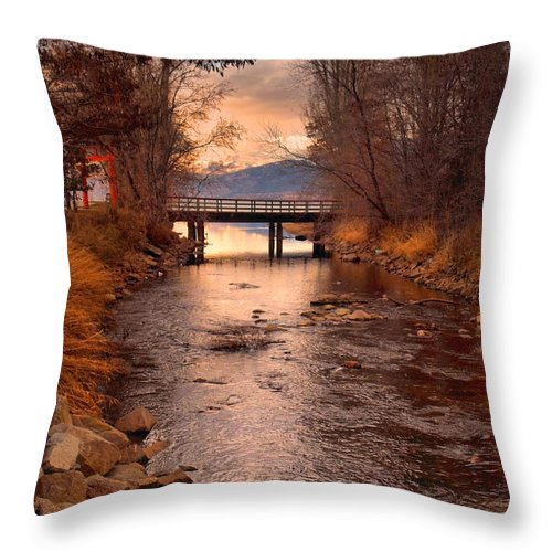 Bridge Throw Pillow featuring the photograph The Bridge By The Lake by Tara Turner
