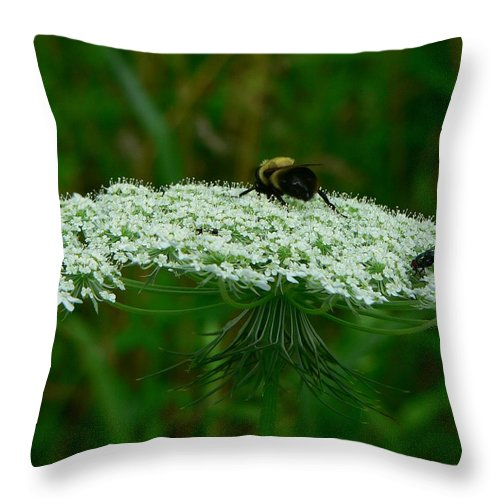 Bumblebee Throw Pillow featuring the photograph The Bumblebee And The Fly by RiaL Treasures