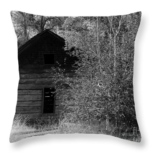 Cabin Throw Pillow featuring the photograph The Cabin by Carol Groenen