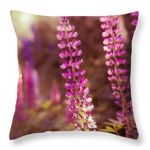 Europe Throw Pillow featuring the photograph The Candle by Radek Spanninger