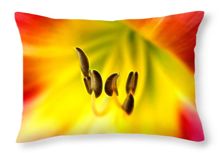 Day Lily Throat Throw Pillow featuring the photograph The Chorus by Bill Morgenstern