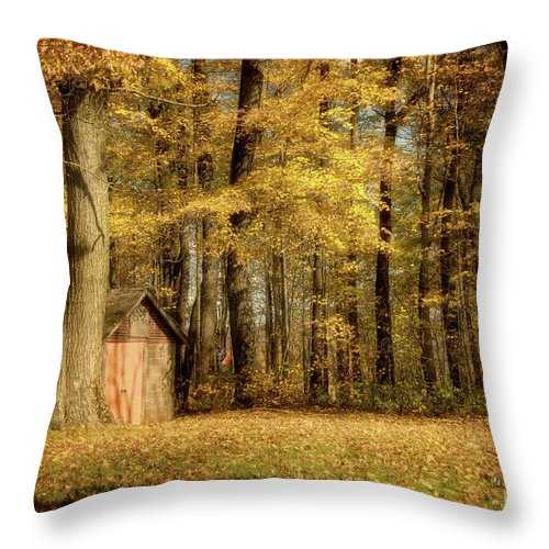 Forest Throw Pillow featuring the photograph The Clearing by Lois Bryan