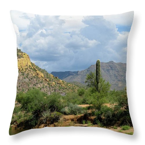 Saguaro Throw Pillow featuring the photograph The Coming Storm by Cathy Franklin