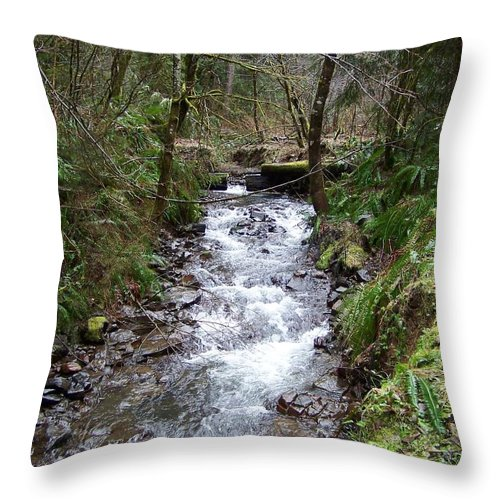 Digital Photography Throw Pillow featuring the photograph The Creek by Laurie Kidd