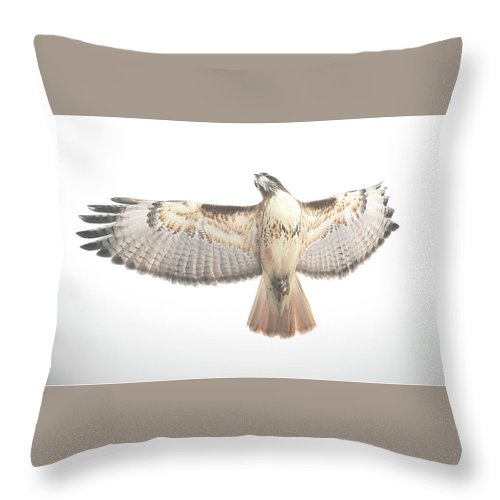 The Throw Pillow featuring the photograph The Crucifixion by Brian Gustafson