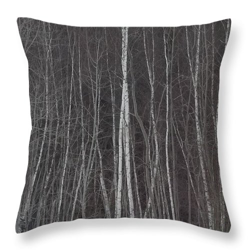 Trees Throw Pillow featuring the photograph The Dark Beyond The Trees by Jackie Mueller-Jones