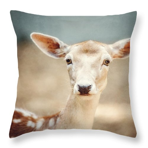 Deer Throw Pillow featuring the photograph The Deer by Lisa Russo