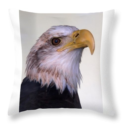 Ann Keisling Throw Pillow featuring the photograph The Eagle by Ann Keisling