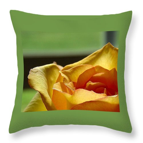 Rose Yellow Throw Pillow featuring the photograph The Edge Of Yellow by Luciana Seymour