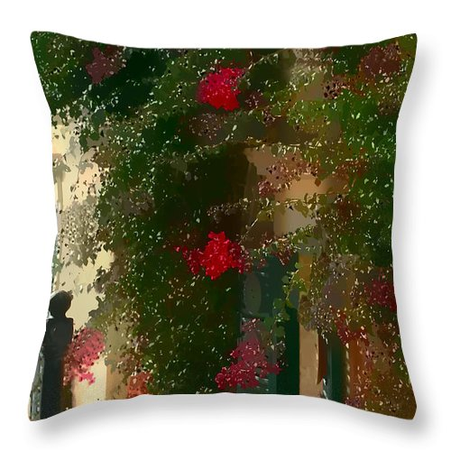 Mdna.medina Throw Pillow featuring the photograph The Entrance by Tom Prendergast