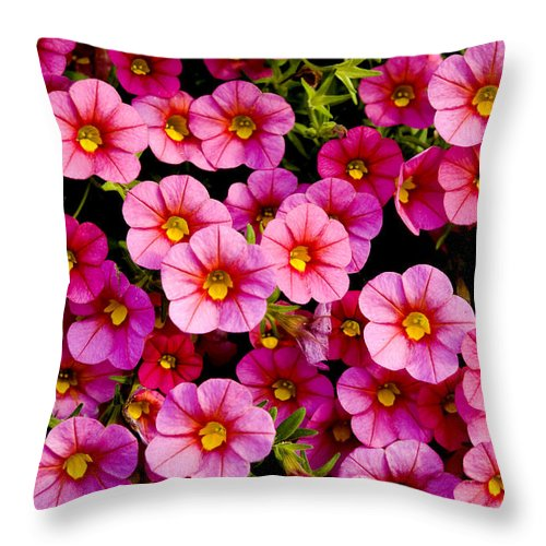 Flowers Throw Pillow featuring the photograph The Eyes by Greg Fortier