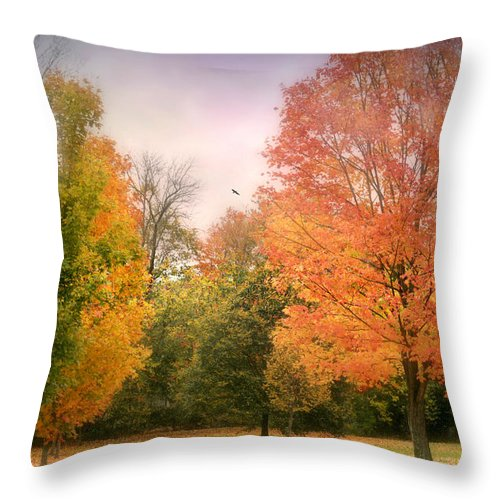 The Fall Out Throw Pillow featuring the photograph The Fall Out by Diana Angstadt